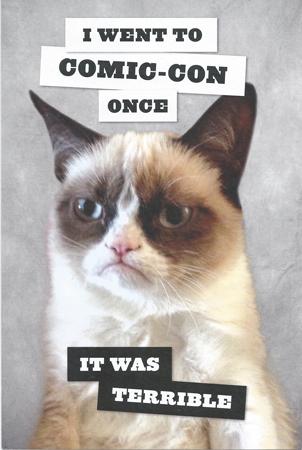 grumpy-cat-front1