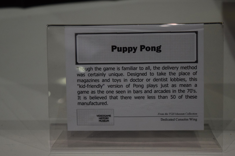 puppy-pong-2